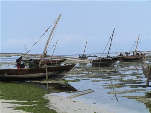 De lokale fiskere klargør deres både