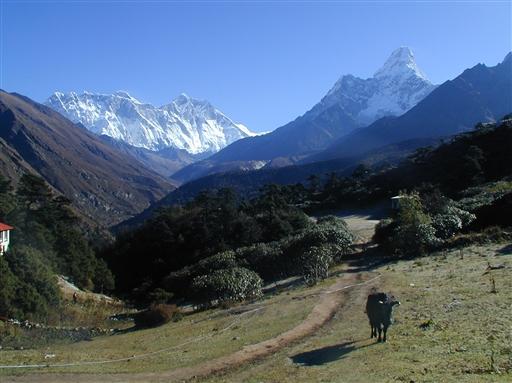 Ama Dablam er et af de flotteste bjerge i Everest regionen
