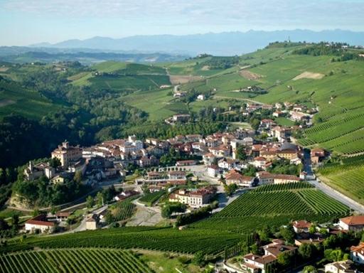 Barolo by omkranset at vinmarker til alle sider.