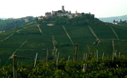 Castiglione Falletto – typisk borgby i Piemonte