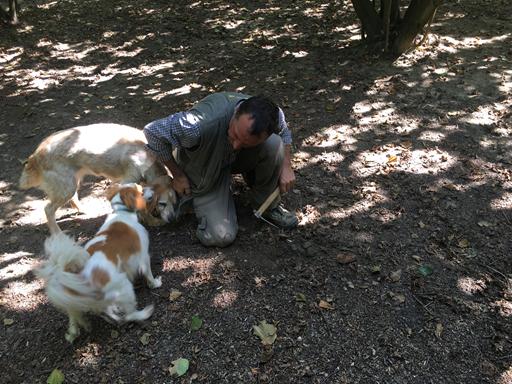 Giovanni og hans 2 hunde. Hundene går i selv i lommen efter godbidder