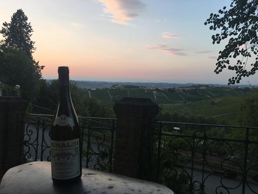 Udsigt til Barbarescos vinmarkerne og alperne i baggrunden