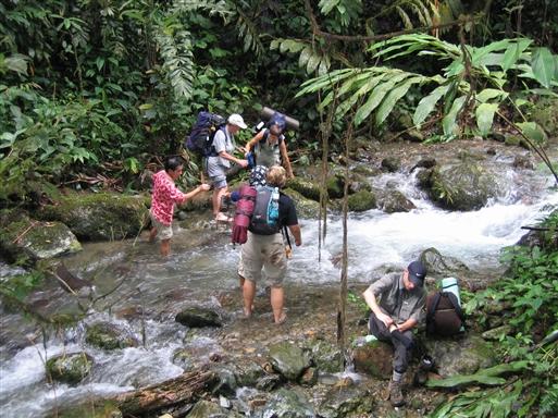 Vandløb krydses - Borneo
