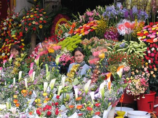 Blomsterhandler i Hanoi - Vietnam