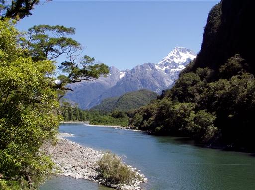 Uspoleret natur - New Zealand