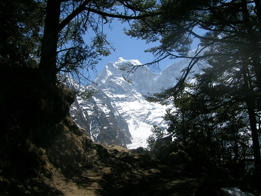 Igennem tæt skov med udsigt til snedækkede bjerge