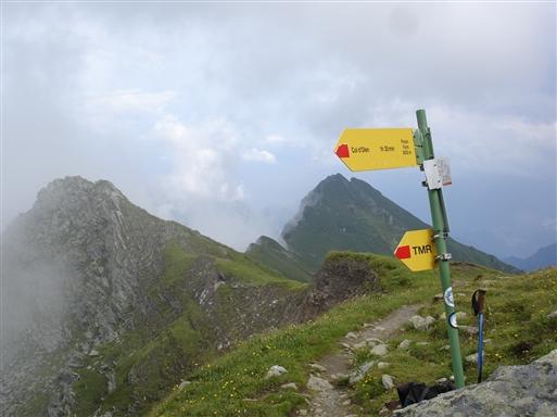 Foric passet med den markante bjergryg