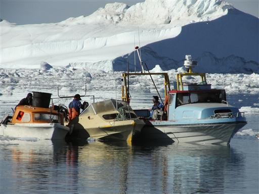 Fiskeri efter Hellefisk, foregår oftest blandt isbjergene ved Kangia fjorden