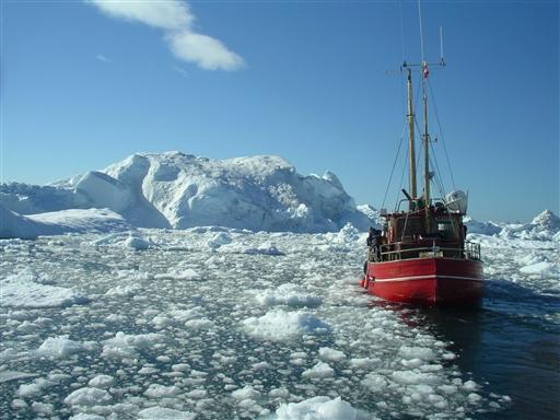 Sejlads blandt skodser og isbjerge