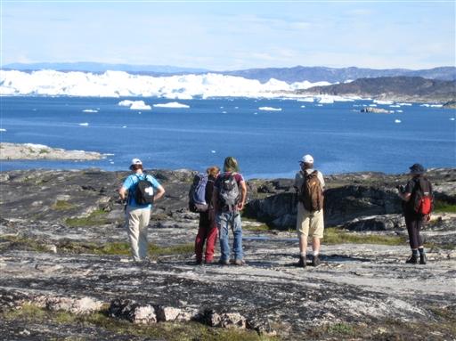 Udsigt til isbjerge hav og hvaler. Hvalerne kommer ofte så tæt på kysten, af de let kan spottes fra land.