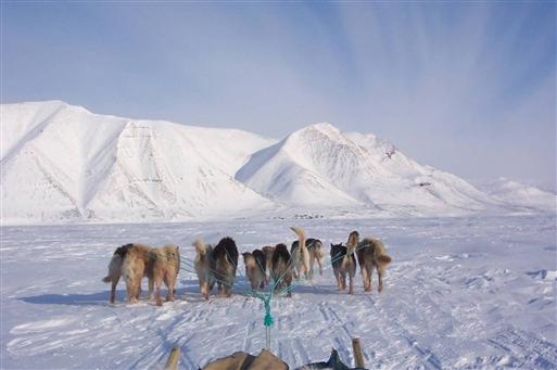 Siorapaluk - verdens nordligste bygd forude