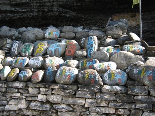 Manisten ses ofte langs stien i de buddistiske områder
