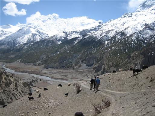 Stien ved Upper Pisang
