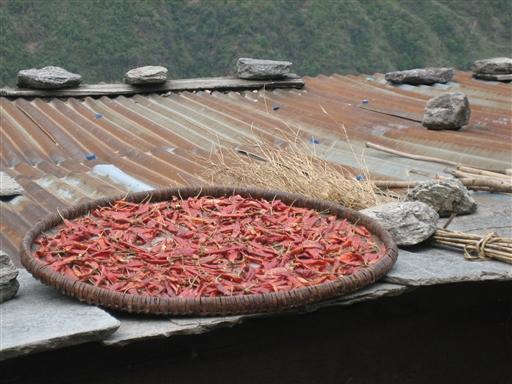 Tørret chili