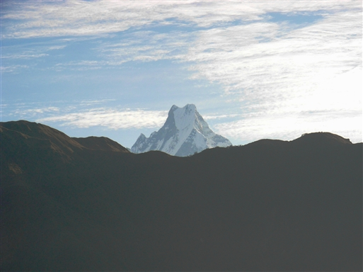 Machapuchare - bedre kendt som Fish Tail