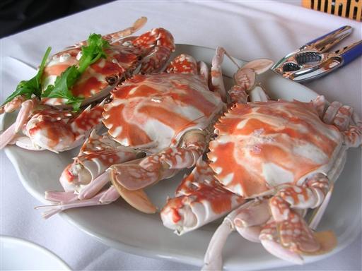 Og dejlig seafood om aftenen!