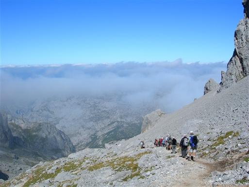 Vi har to vandreture i den højalpine zone, hvor vi ofte kommer op over skydækket.