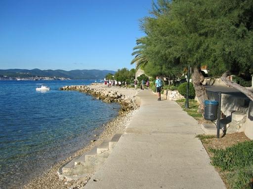 Vi vandrer langs Makarska Rivieraens kyst med palmer og det smukkeste klare, blå vand