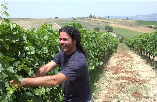 Roberto laver en af Umbriens bedste vine.