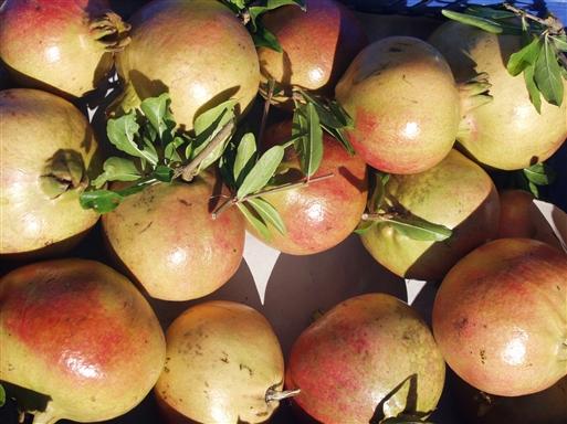 Umbrien er rig på landsbrugsprodukter og frugter.