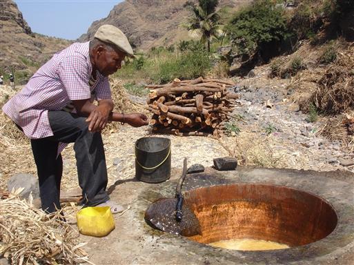 Grogue/sukkerrørsbrændevin.