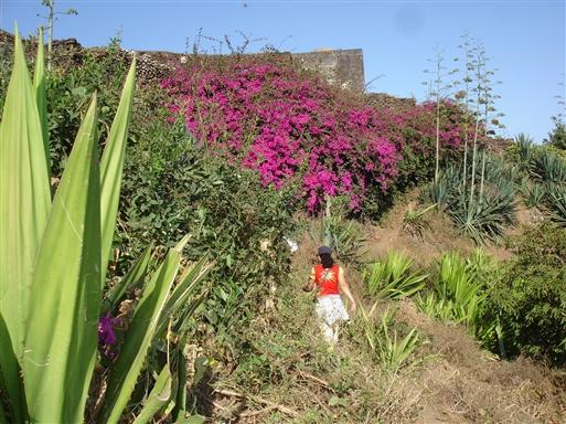 På vej til en kop lokal Cabo Verde kaffe …