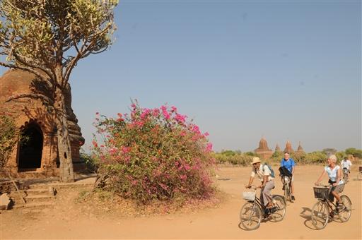 Det er varmt, men dejligt at cykle mellem pagoderne