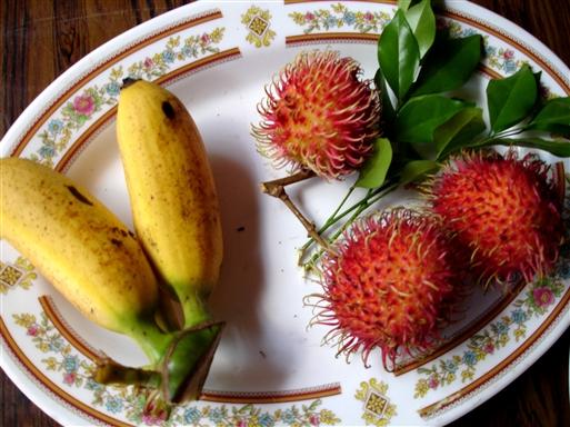 De tropiske lækre frugter finder vi overalt i deltaet.