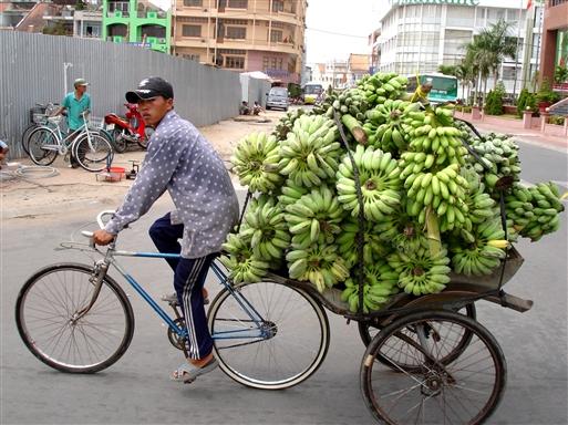 Og bananerne her kommer fra Nordvietnam.