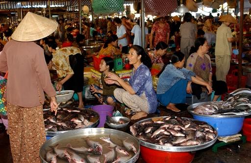 Markederne bugner af sprællevende fisk.