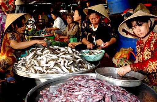 lækre blæksprutter og friske fisk.