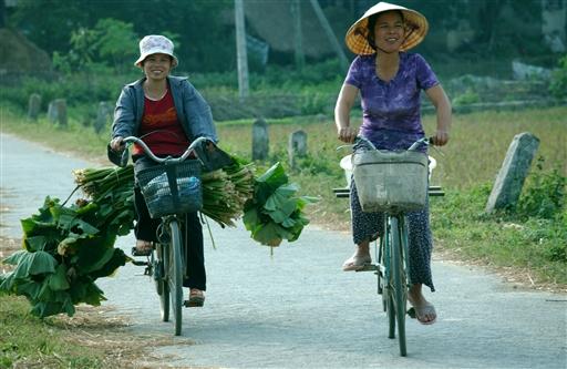Alt transporteres på cykel - med et smil!