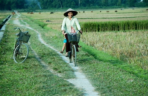 De små stier mellem rismarkerne er helt perfekte til cykelture.
