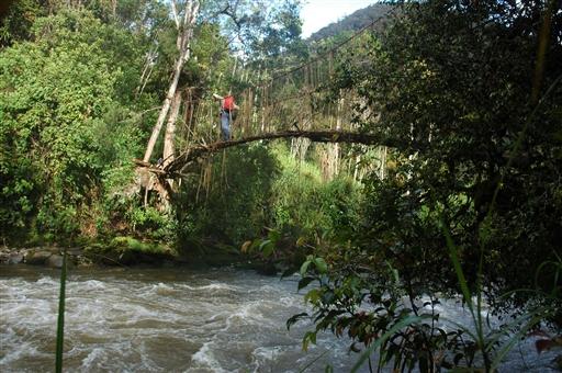Robuste, håndlavede hængebroer fører os over de brusende floder