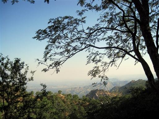 Udsigt over trekkingområdet