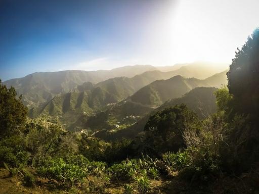 Vi har tre flotte vandreture på den frodige grønne ø La Gomera
