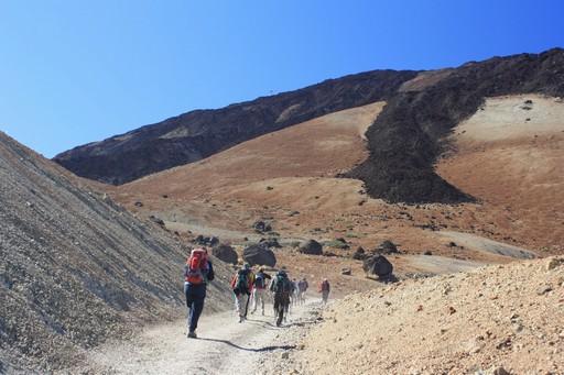 Lange sorte 'lava-arme' i Teides vulkanlandskab