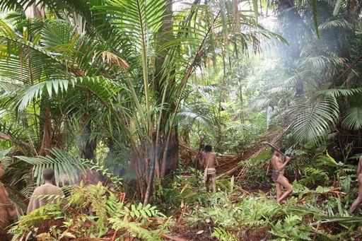 Man mener, at Papua har v�ret beboet de sidste 30-40.000 �r, men kontakten med omverdenen var yderst begr�nset indtil midt i 20. �rhundrede