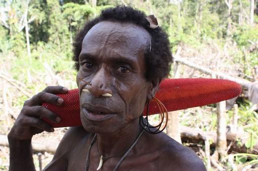Piercing har været brugt i flere hundrede generationer i Papua før det blev mode i den vestlige verden!