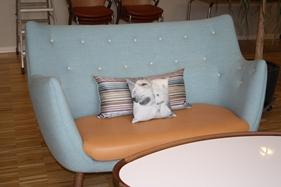 Opholdsstuen, med Finn Juhls 'Poeten' sofa og Øje bord. Stuen er placeret midt i den ene gang fløj, sådan at det er helt oplagt for både patienter, pårørende og ansatte, at slå sig ned og hygge, i rolige og komfortable omgivelser.