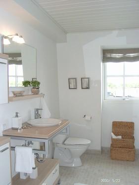 Funktionelt badeværelse, inkl. brus, toilet, håndvask og vaskesøjle.