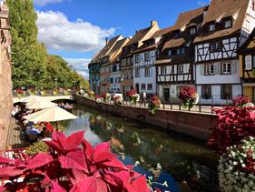 Alsace Colmar