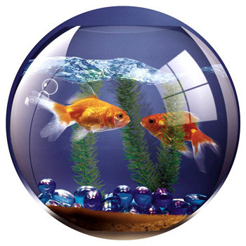 Fellowes Mouse pad, fish bowl scene