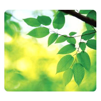Fellowes Mouse pad, Earth Series Leaves