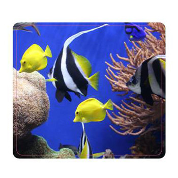 Fellowes Mouse pad, Earth Series Under The Sea