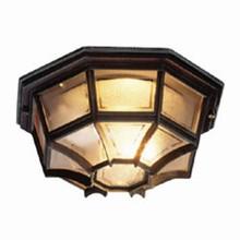 Apollo Udendørs Loftlampe fra Noral