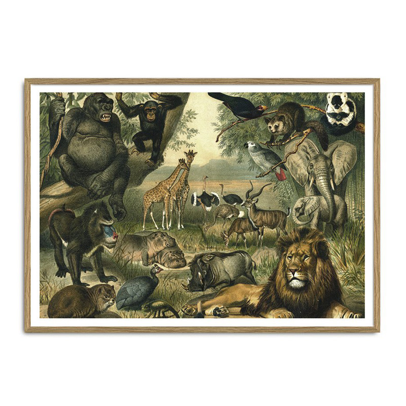 The Dybdahl Co. African Fauna Plakat – pris 375.00