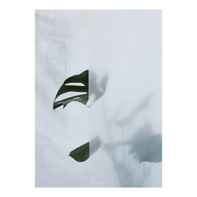Kristina Dam Split-leaf I Plakat – pris 400.00