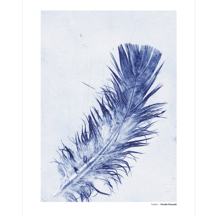 Pernille Folcarelli Feather 3 Illustration m. Ramme