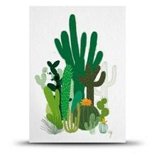 Studio Arhoj Postkort Cacti